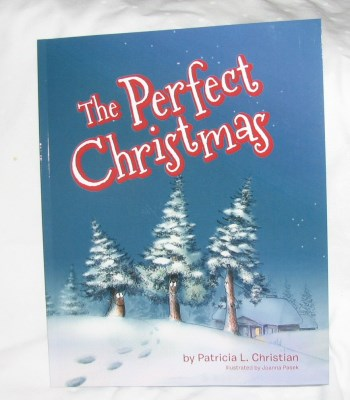 the perfect christmas Patricia L Christian 111